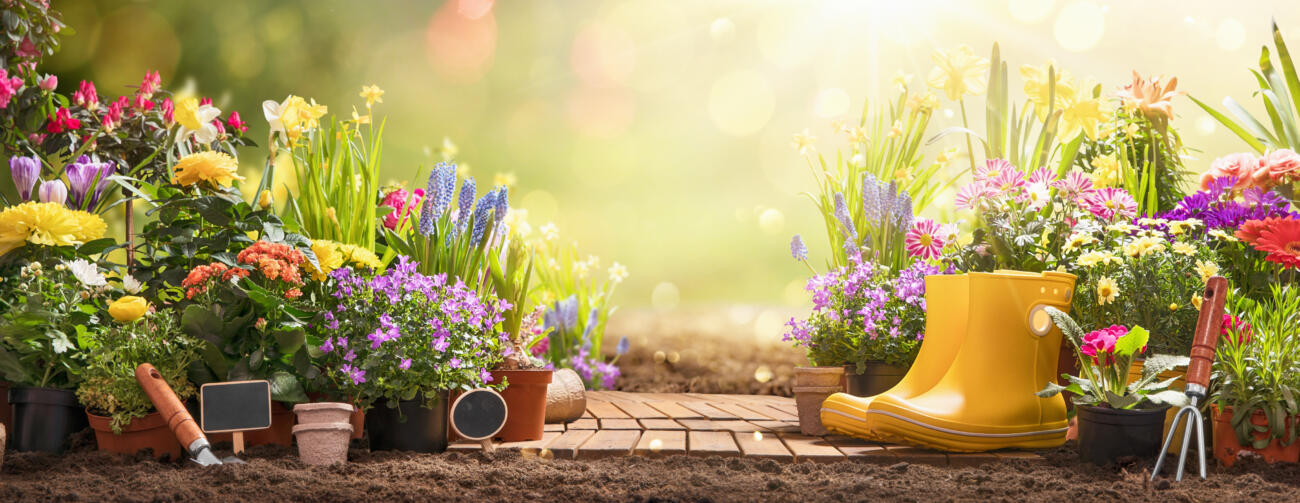 Is Your Garden Ready for Spring?